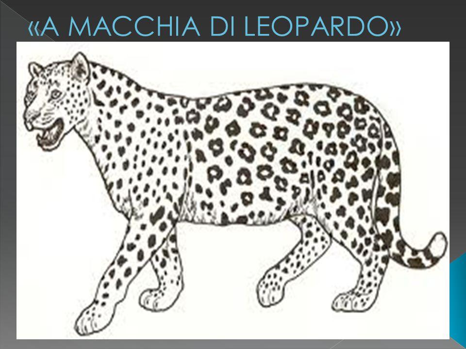 «A MACCHIA DI LEOPARDO»