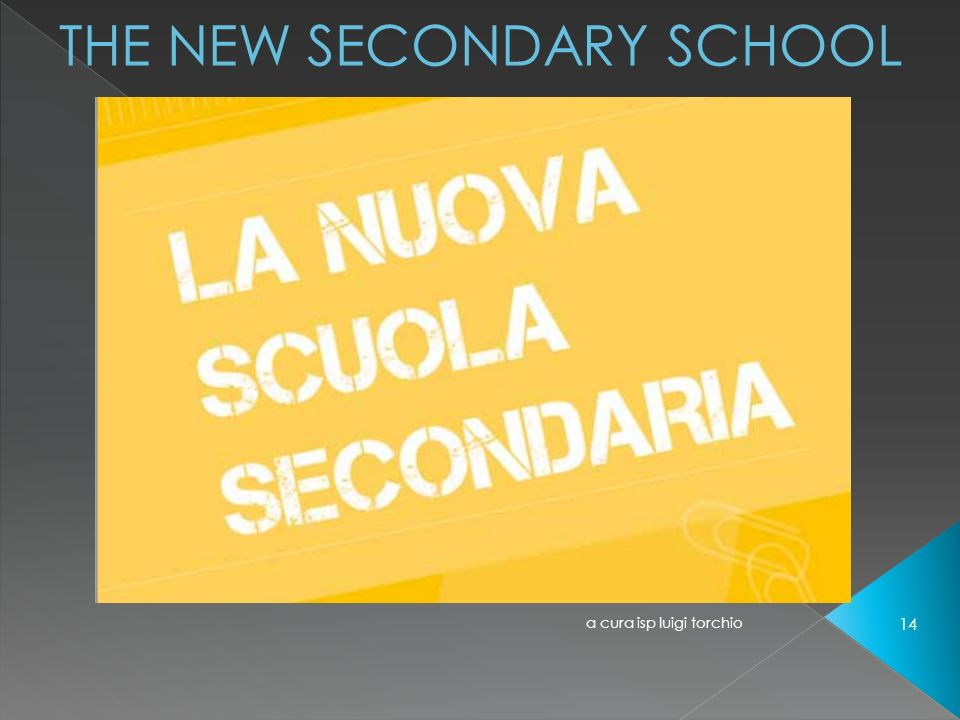 THE NEW SECONDARY SCHOOL