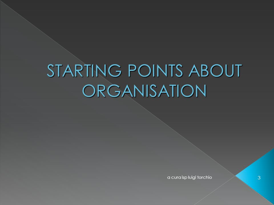 STARTING POINTS ABOUT ORGANISATION