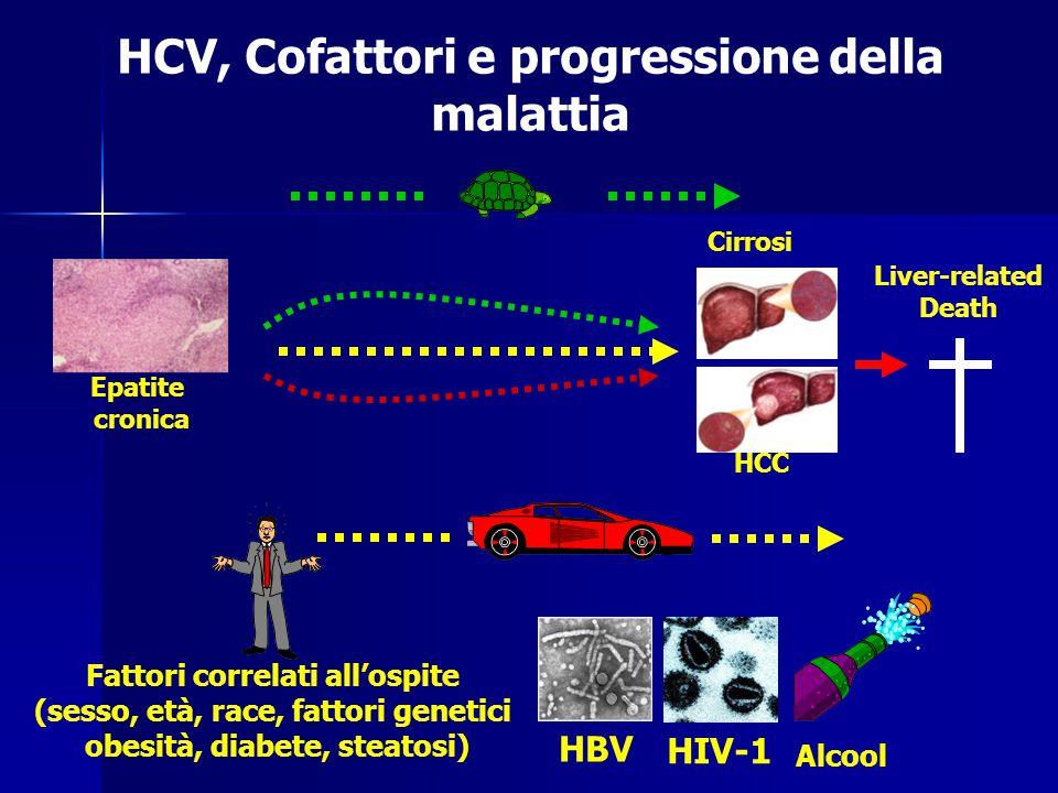 HCV, Cofattori e progressione della malattia