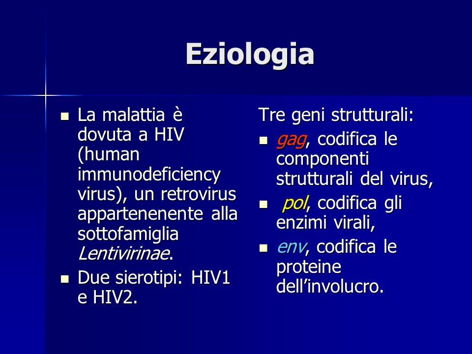 Eziologia La malattia è dovuta a HIV (human immunodeficiency virus), un retrovirus appartenenente alla sottofamiglia Lentivirinae.