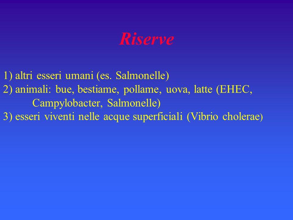Riserve 1) altri esseri umani (es. Salmonelle)