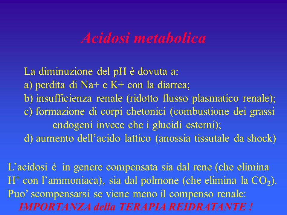 Acidosi metabolica La diminuzione del pH è dovuta a: