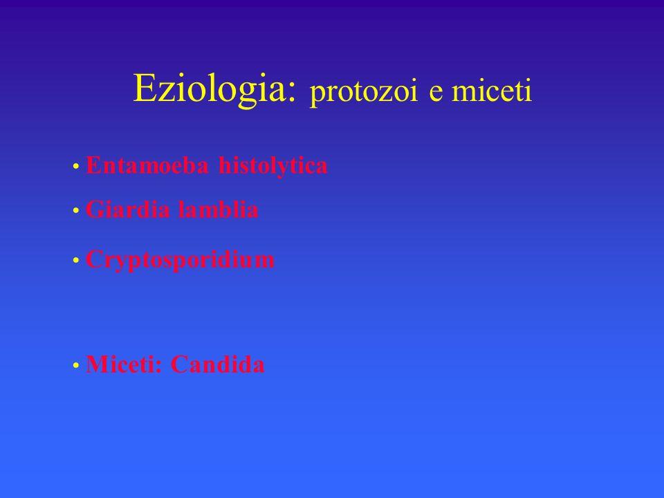 Eziologia: protozoi e miceti