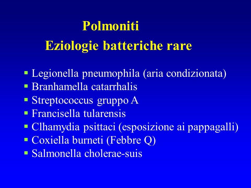 Eziologie batteriche rare