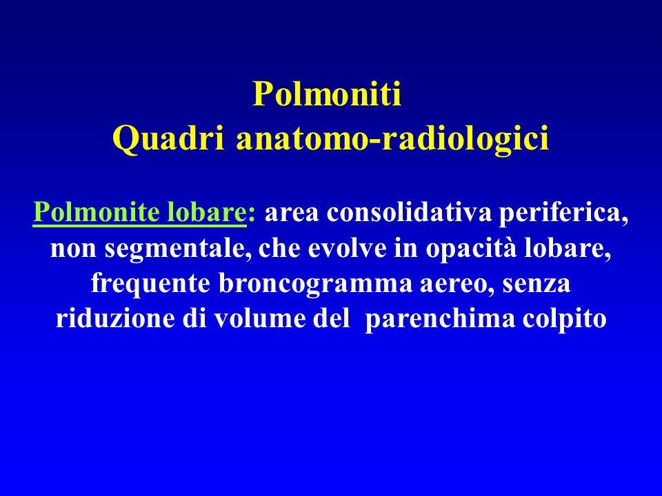Quadri anatomo-radiologici