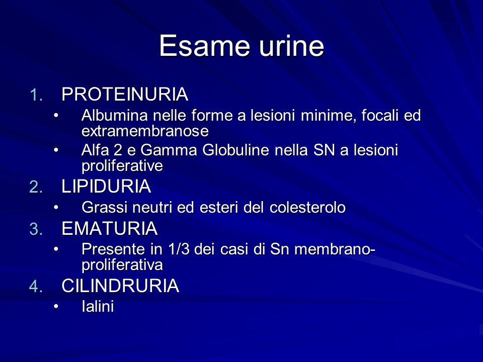 Esame urine PROTEINURIA LIPIDURIA EMATURIA CILINDRURIA