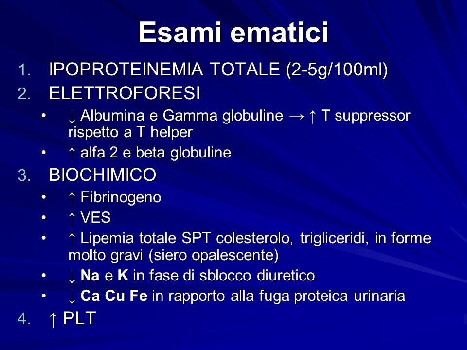 Esami ematici IPOPROTEINEMIA TOTALE (2-5g/100ml) ELETTROFORESI