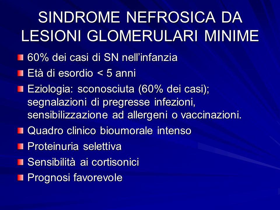 SINDROME NEFROSICA DA LESIONI GLOMERULARI MINIME