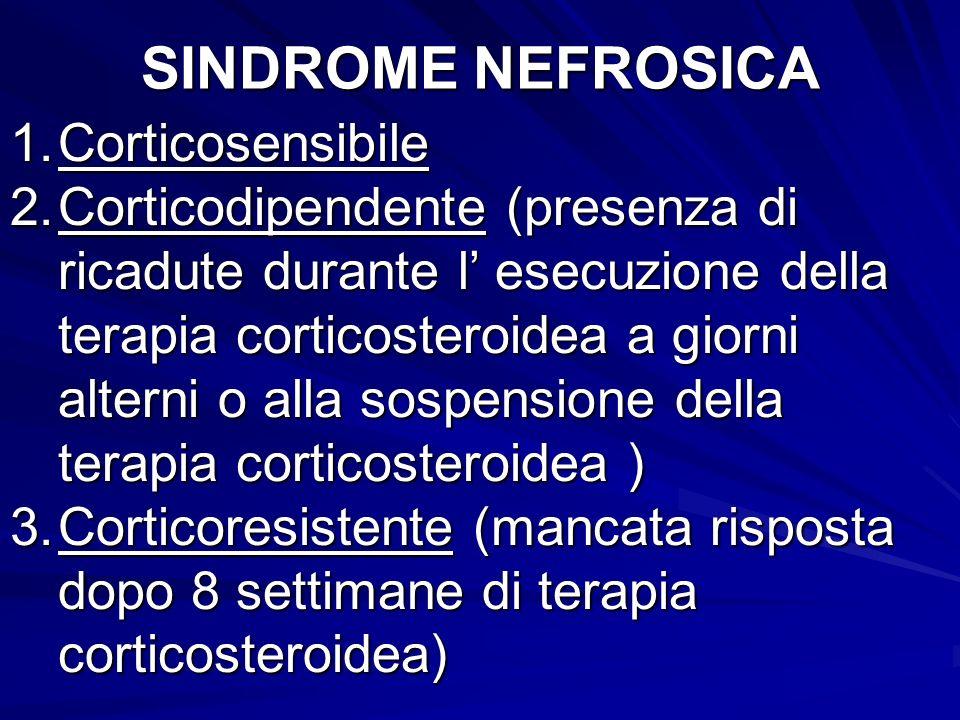 SINDROME NEFROSICA Corticosensibile