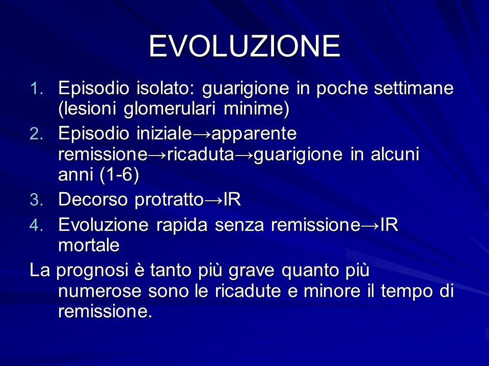 EVOLUZIONE Episodio isolato: guarigione in poche settimane (lesioni glomerulari minime)