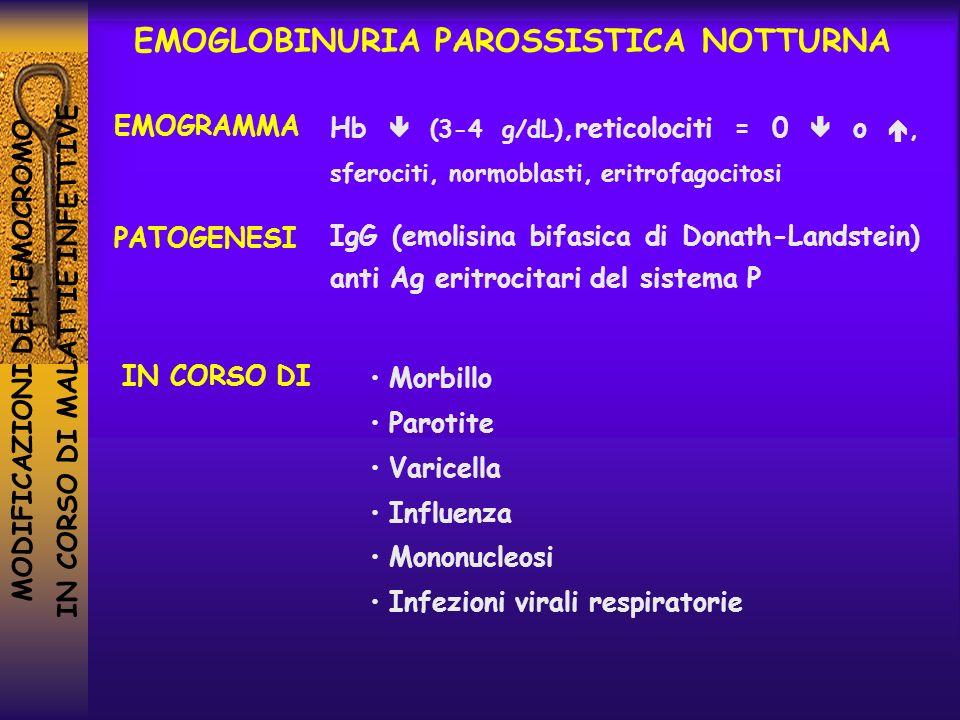 EMOGLOBINURIA PAROSSISTICA NOTTURNA