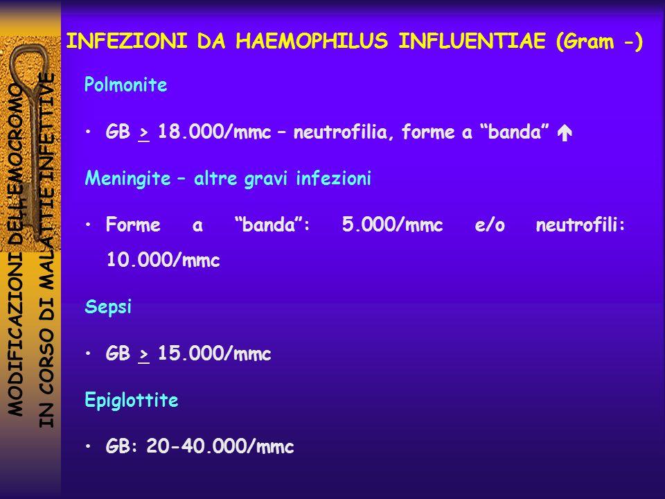 INFEZIONI DA HAEMOPHILUS INFLUENTIAE (Gram -)