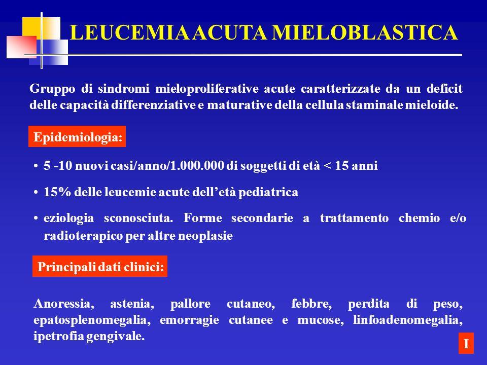 LEUCEMIA ACUTA MIELOBLASTICA