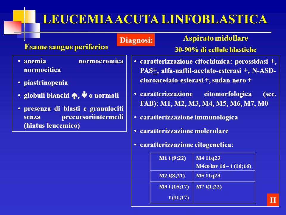 LEUCEMIA ACUTA LINFOBLASTICA 30-90% di cellule blastiche