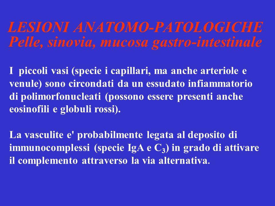 LESIONI ANATOMO-PATOLOGICHE Pelle, sinovia, mucosa gastro-intestinale