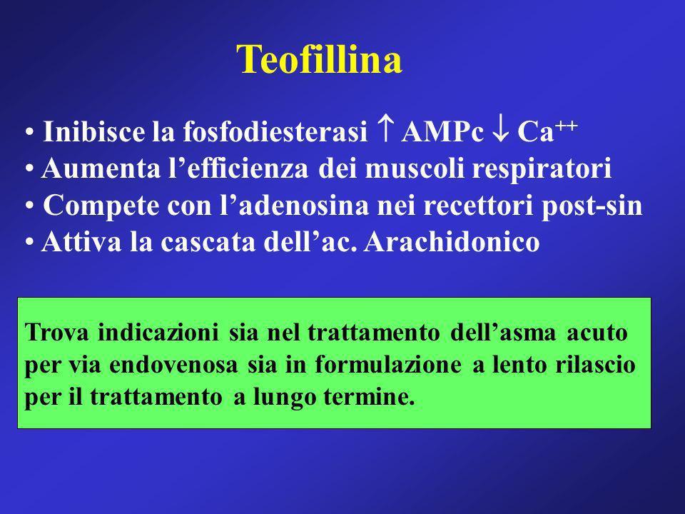 Teofillina Inibisce la fosfodiesterasi  AMPc  Ca++