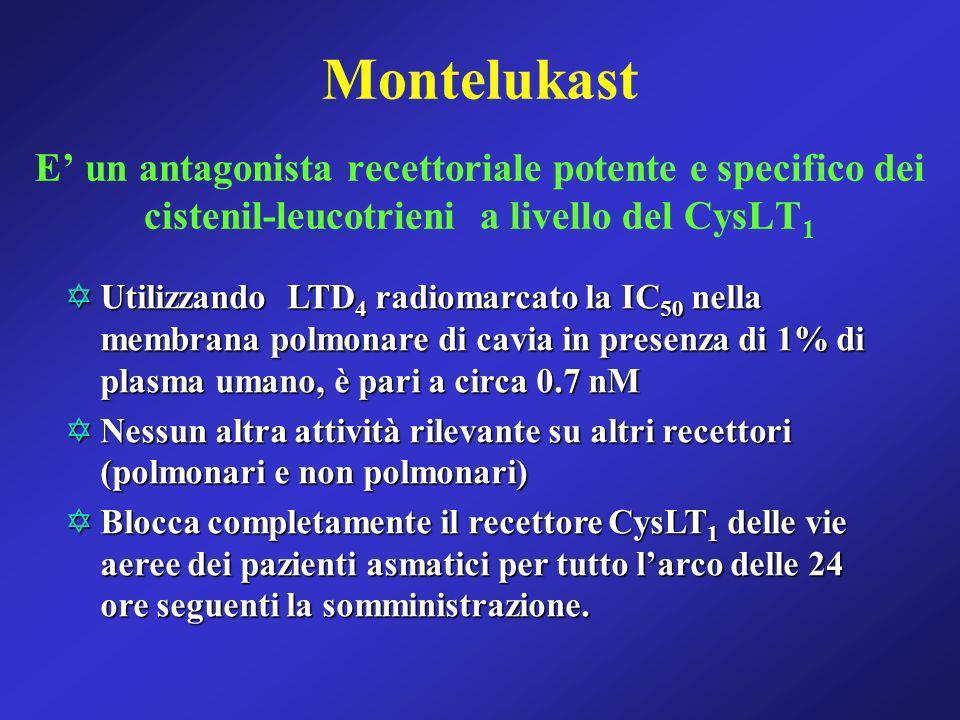 Montelukast E' un antagonista recettoriale potente e specifico dei cistenil-leucotrieni a livello del CysLT1