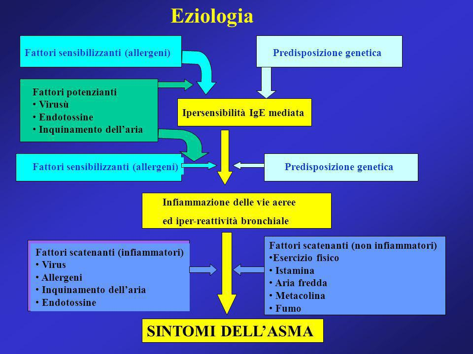 Eziologia SINTOMI DELL'ASMA Fattori sensibilizzanti (allergeni)