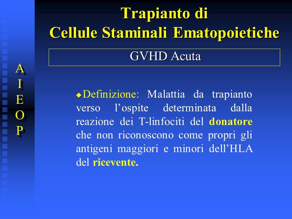 Trapianto di Cellule Staminali Ematopoietiche