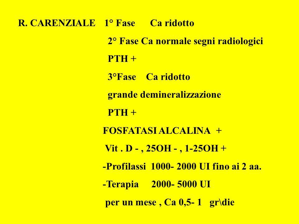 R. CARENZIALE 1° Fase Ca ridotto