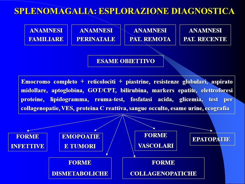 SPLENOMAGALIA: ESPLORAZIONE DIAGNOSTICA