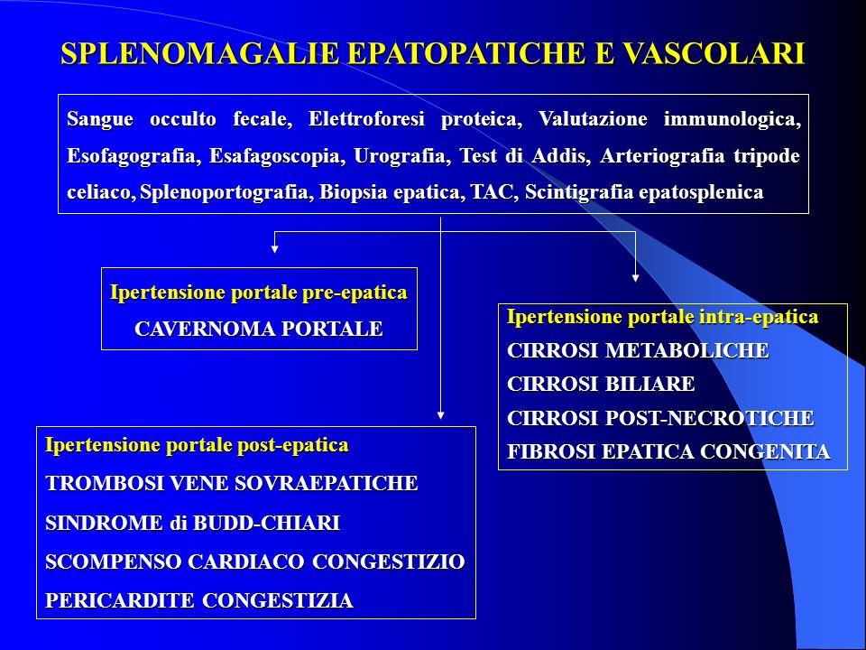SPLENOMAGALIE EPATOPATICHE E VASCOLARI