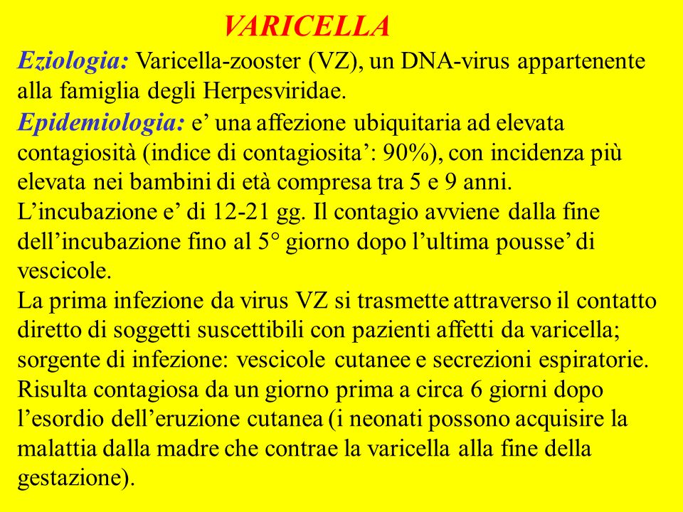 VARICELLAEziologia: Varicella-zooster (VZ), un DNA-virus appartenente alla famiglia degli Herpesviridae.
