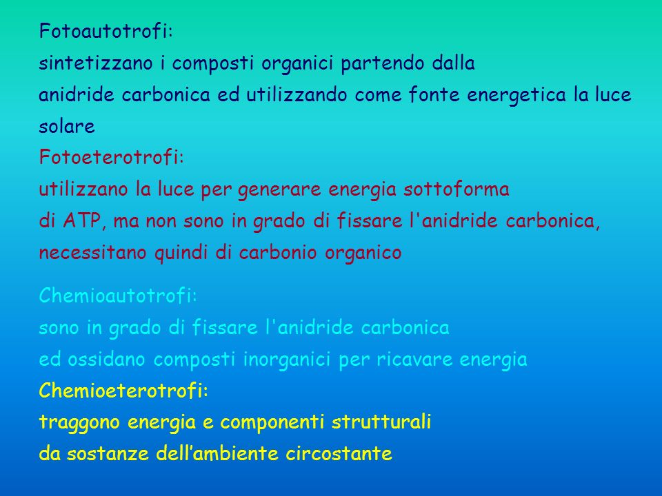 Fotoautotrofi: sintetizzano i composti organici partendo dalla. anidride carbonica ed utilizzando come fonte energetica la luce.
