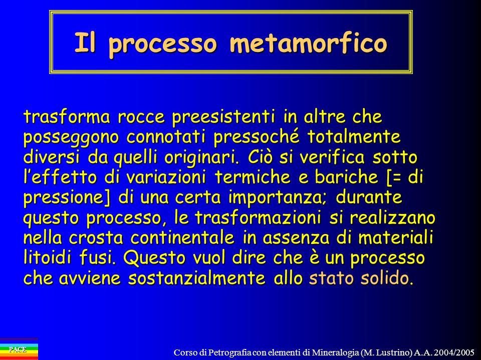 Il processo metamorfico