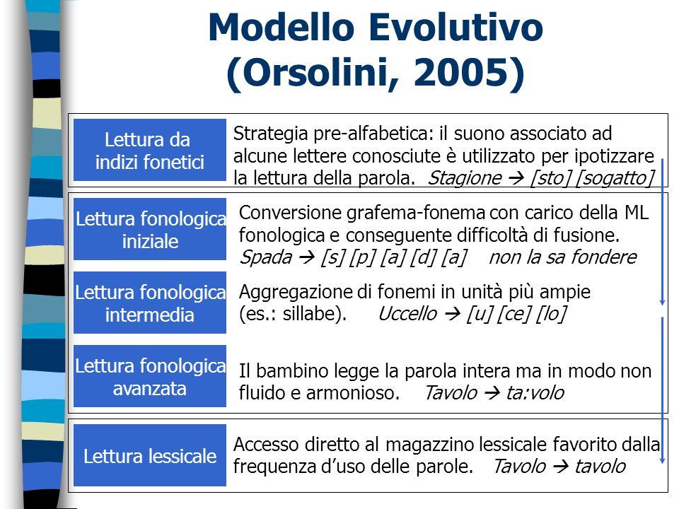 Modello Evolutivo (Orsolini, 2005)