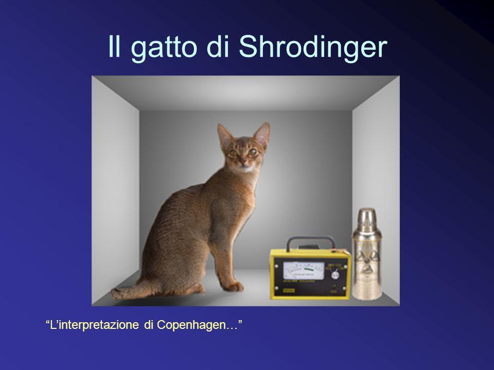 Il gatto di Shrodinger L'interpretazione di Copenhagen…