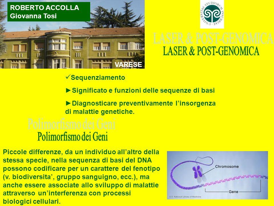 LASER & POST-GENOMICA Sequenziamento Polimorfismo dei Geni
