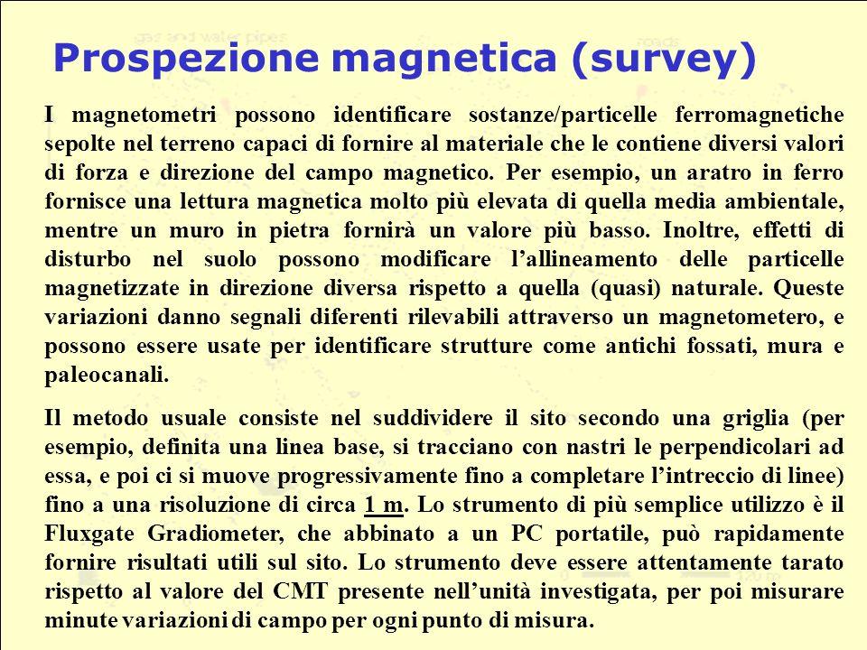 Prospezione magnetica (survey)