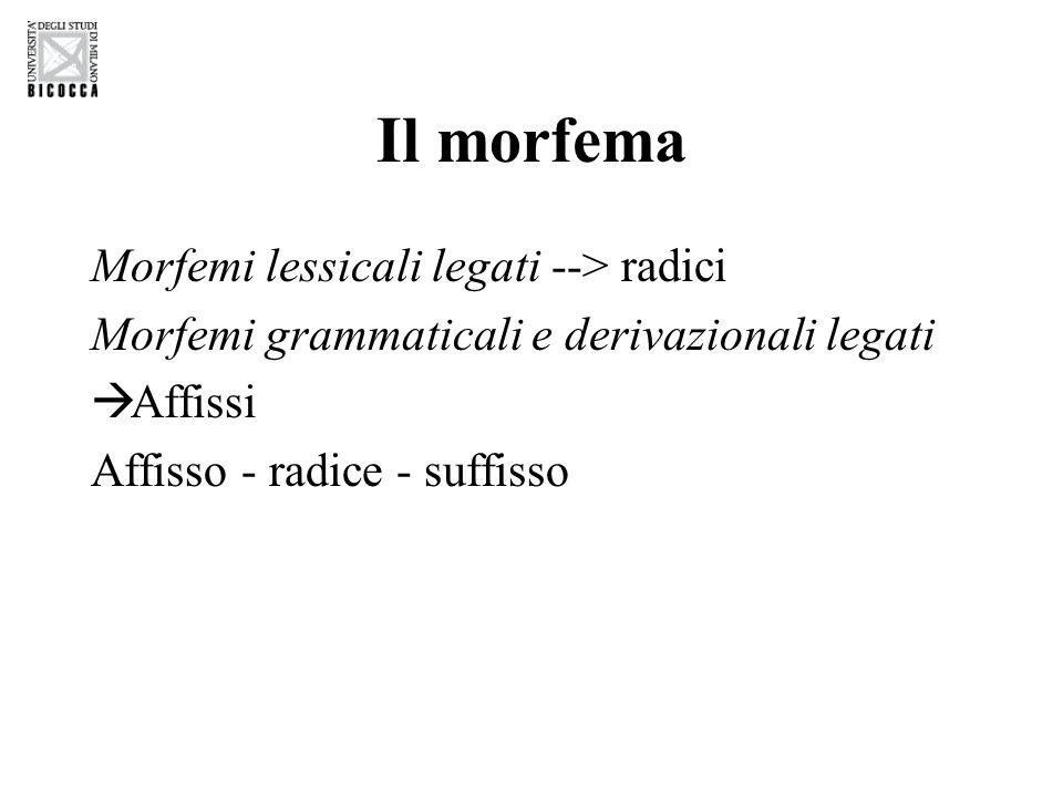 Il morfema Morfemi lessicali legati --> radici