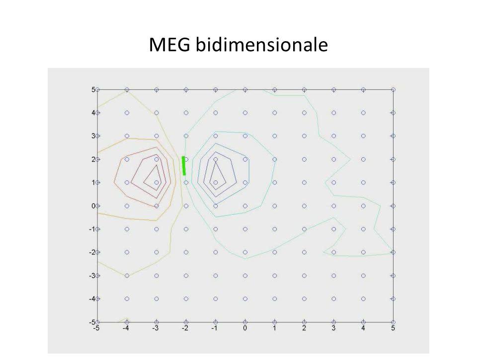 MEG bidimensionale