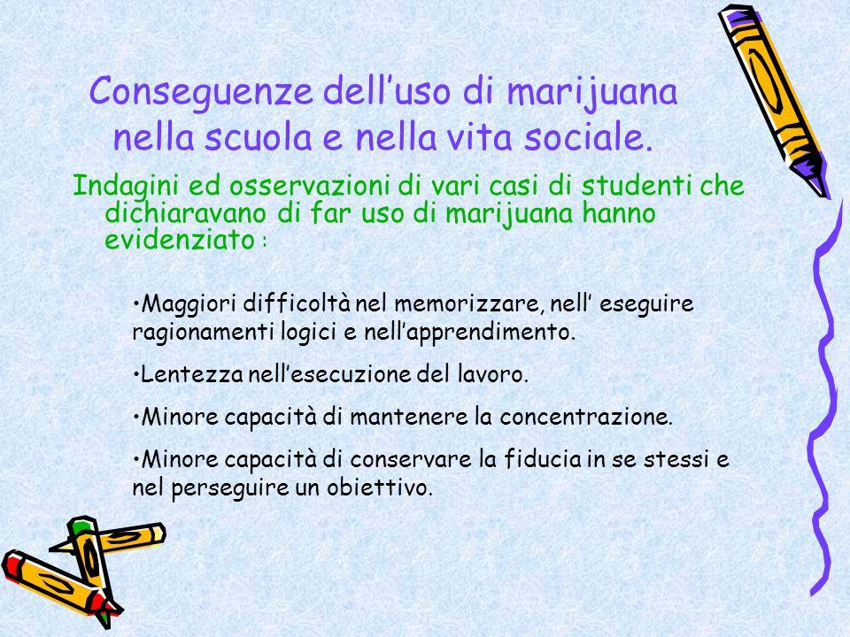 Conseguenze dell'uso di marijuana nella scuola e nella vita sociale.