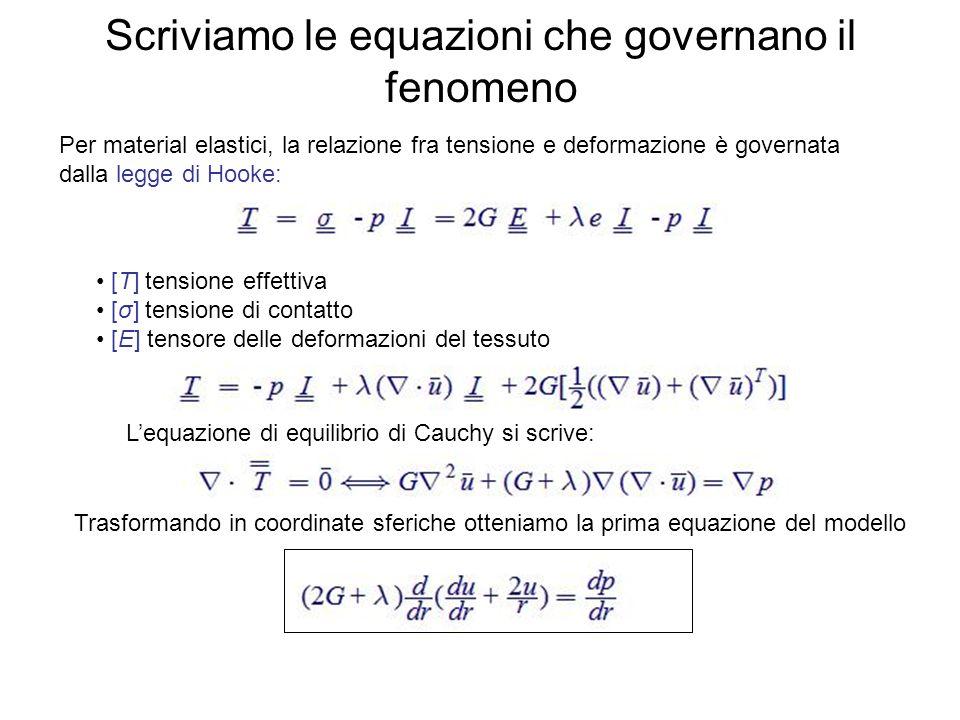 Scriviamo le equazioni che governano il fenomeno