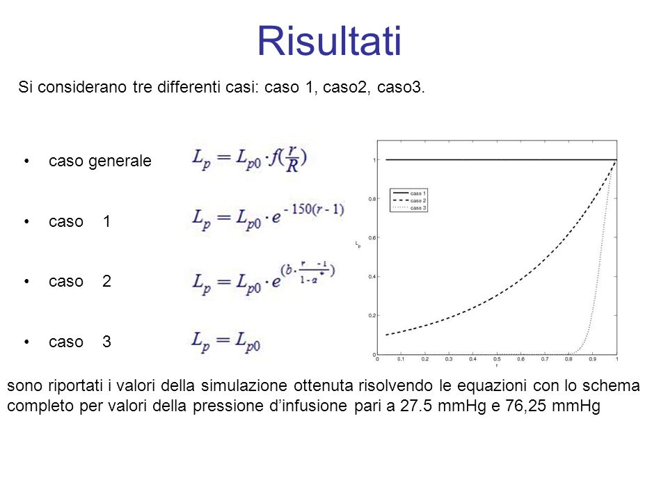 Risultati Si considerano tre differenti casi: caso 1, caso2, caso3.