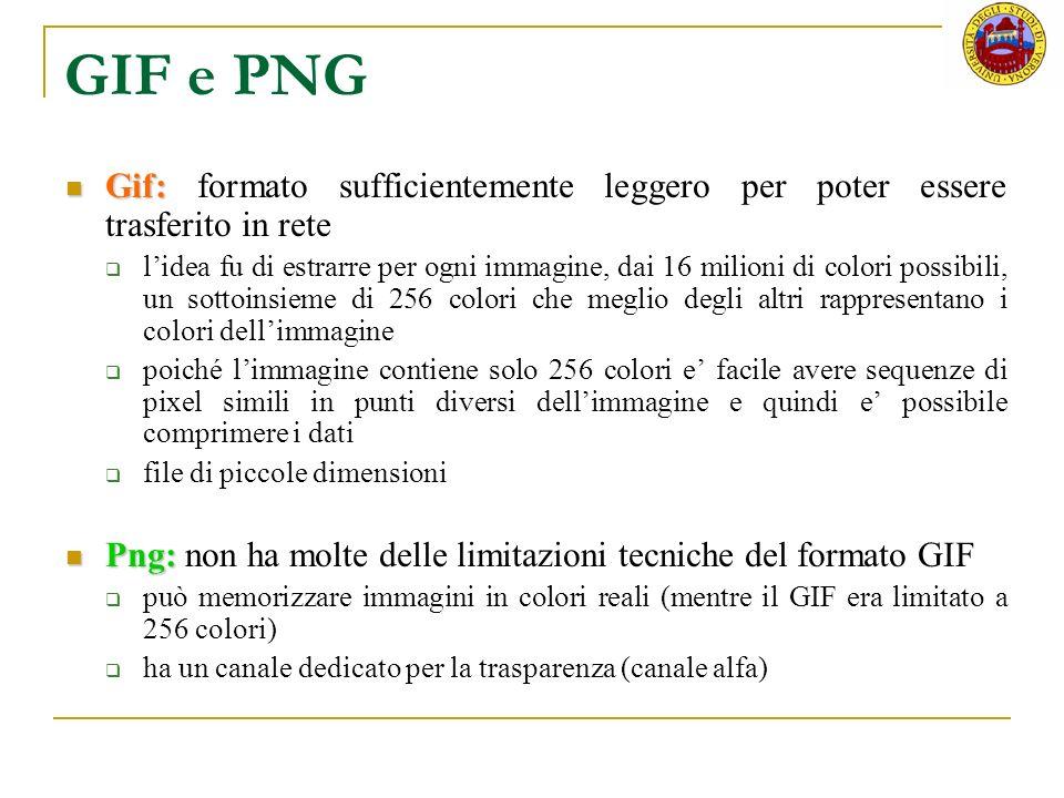 GIF e PNG Gif: formato sufficientemente leggero per poter essere trasferito in rete.