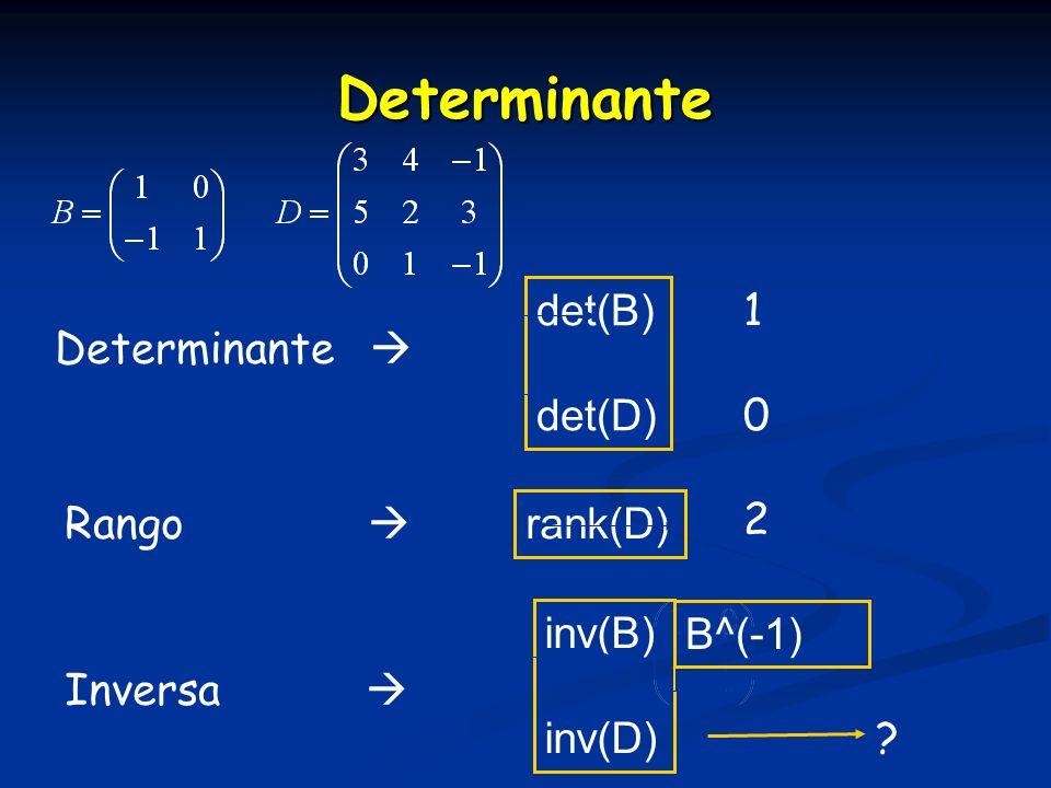 Determinante det(B) 1 Determinante  det(D) 2 Rango  rank(D) inv(B)