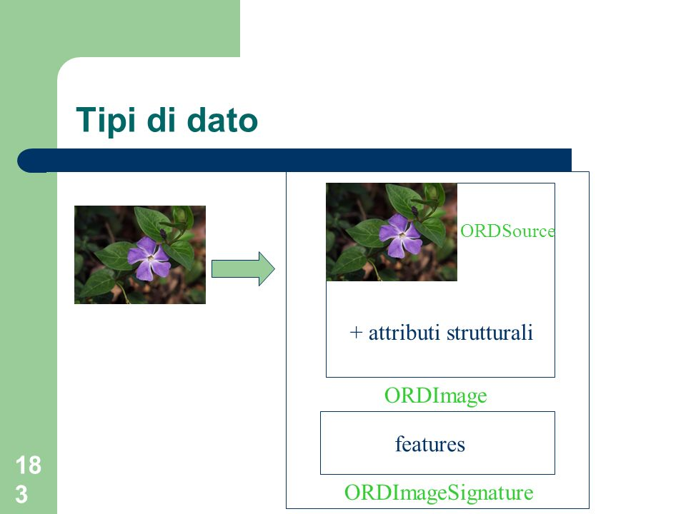 Tipi di dato + attributi strutturali ORDImage features