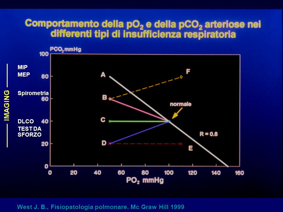 IMAGING West J. B., Fisiopatologia polmonare. Mc Graw Hill 1999 MIP