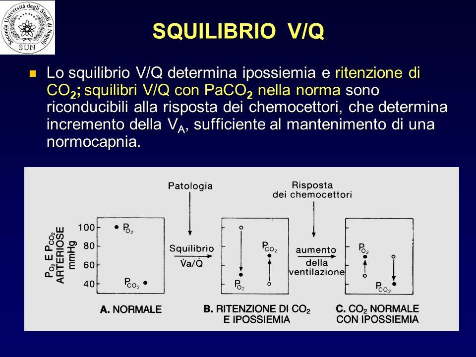 SQUILIBRIO V/Q