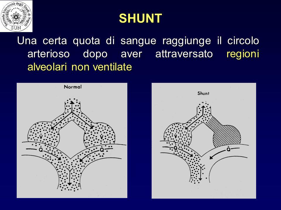SHUNT Una certa quota di sangue raggiunge il circolo arterioso dopo aver attraversato regioni alveolari non ventilate.