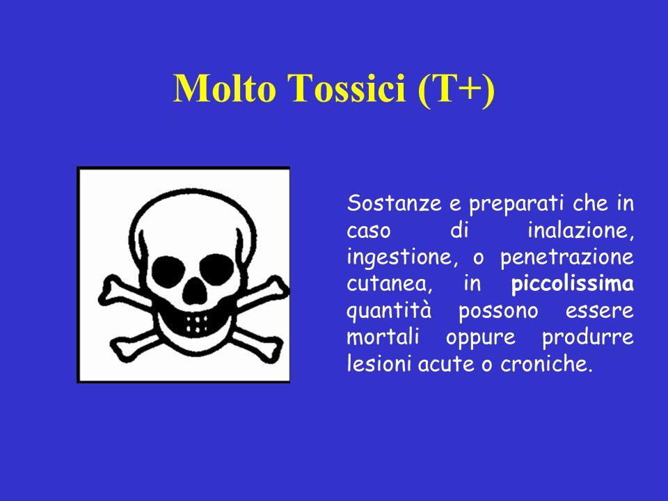 Molto Tossici (T+)