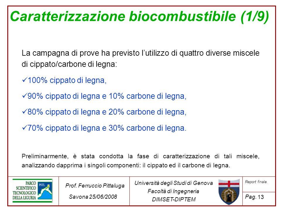 Caratterizzazione biocombustibile (1/9)