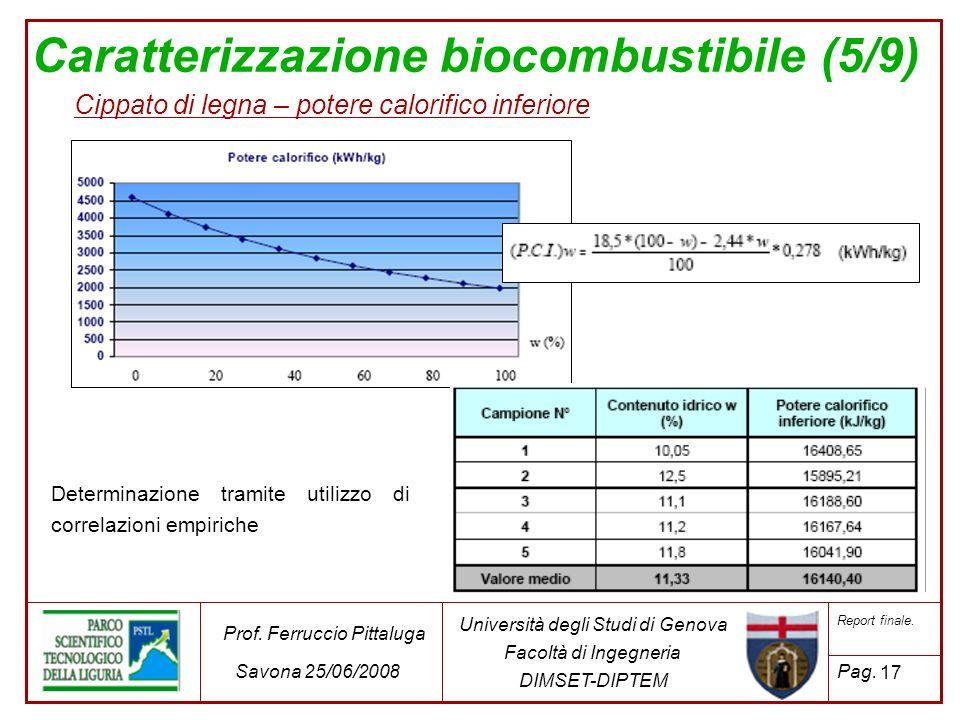 Caratterizzazione biocombustibile (5/9)