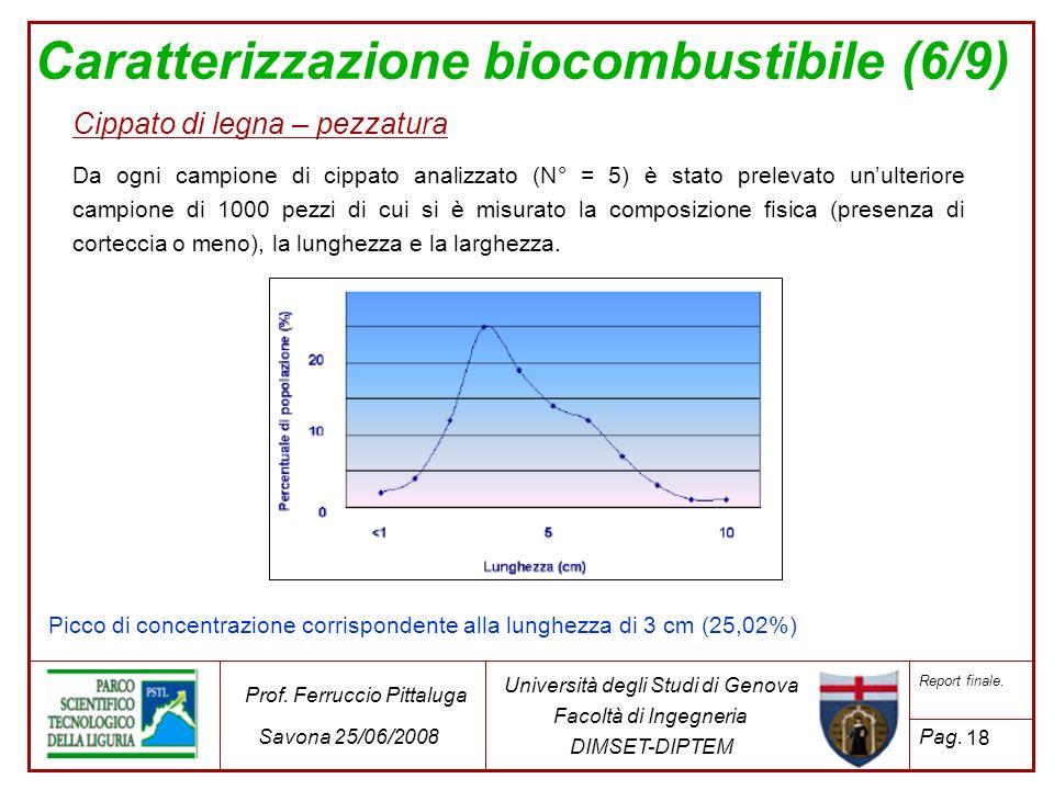 Caratterizzazione biocombustibile (6/9)