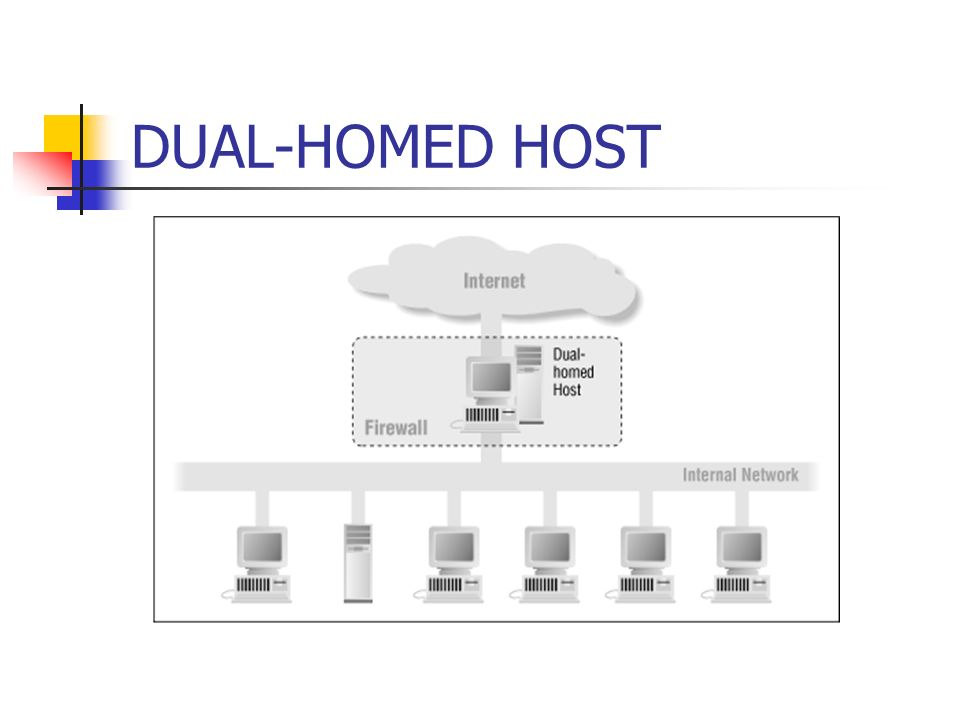 DUAL-HOMED HOST
